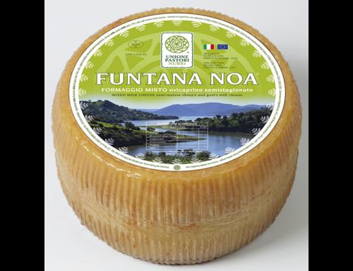 Funtana Noa semi-mature